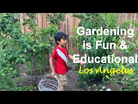 Teaching a Child How to Grow a Garden | Gardening is Fun and Educational  | Los Angeles Backyard