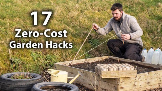 17 Brilliant FREE Vegetable Gardening Hacks | More Food for Less Effort
