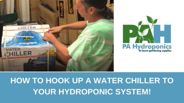 How to Hook Up a Water Chiller to Your Hydroponic System!
