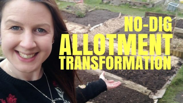 New Allotment Turned Into A NO-DIG (NO TILL) Easy Vegetable Garden Fast