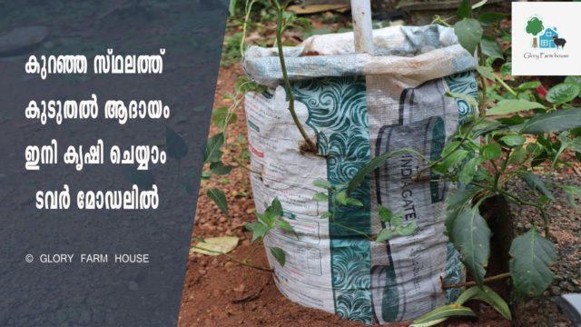 Tower Model Vegetable Garden In Malayalam | കുറഞ്ഞ സ്ഥലത്ത് കുടുതൽ ആദായം ഇനി കൃഷി ചെയ്യാം ടവർ മോഡലിൽ