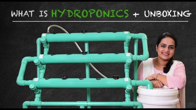 What is Hydroponics + Unboxing