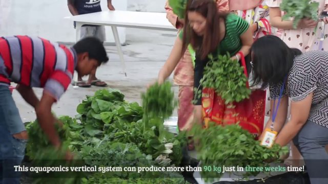 Aquaponics Vertical Farming – CFFRC x Homegrown Farm Semenyih