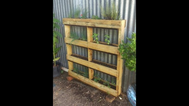 How to upcycle an old pallet to make a vertical herb garden or strawberry planter