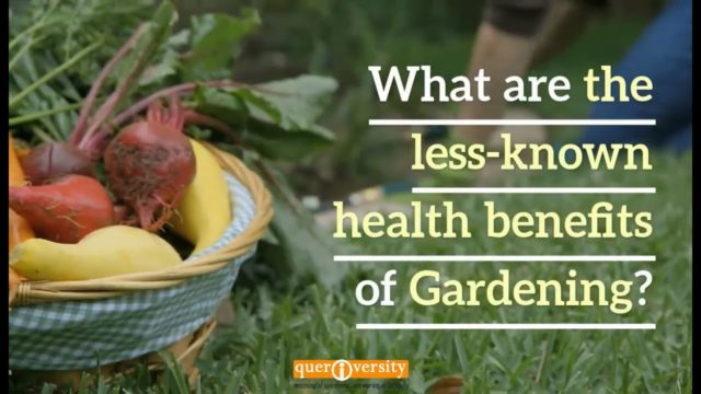 What are the Less-known Health Benefits of Gardening?