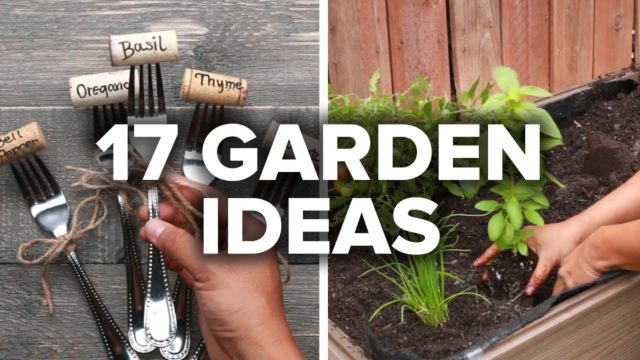 17 Fun Garden Ideas
