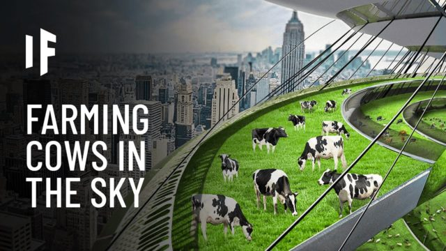 What If We Built Vertical Farms?