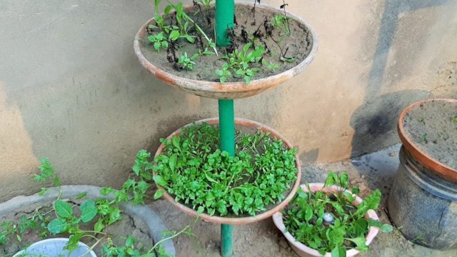 how to make Vertical Planter Tower/garden tower vertical container