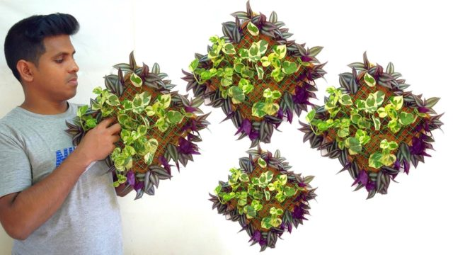 wall planters//vertical gardening ideas//hanging plant pots//decoration
