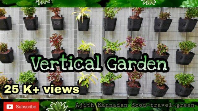 Vertical garden  |  ഈസി ആയി വെർട്ടിക്കൽ ഗാർഡൻ ചെയ്യാം..Vertical garden making video.