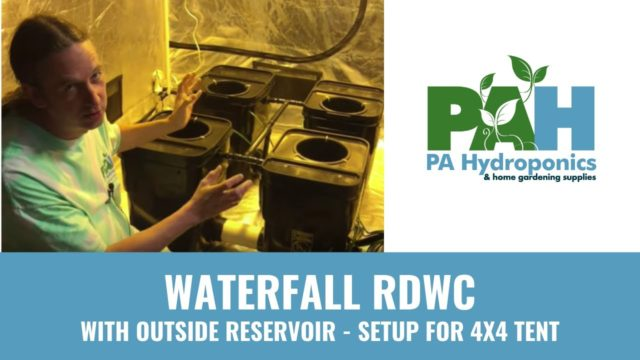 PA Hydroponics 4 Plant Fallponic Waterfall RDWC Setup with Reservoir Outside 4×4 Tent