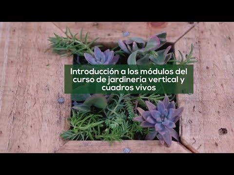 Jardines Verticales y Cuadros Vivos: Intro -UNC- UPV- Campus Virtual