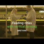 Paid Post – Feeding cities with vertical farming | Rethink Sustainability