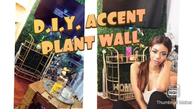 Small Apartment Decor | DIY Accent Wall | Plant Wall | Living Room Decor