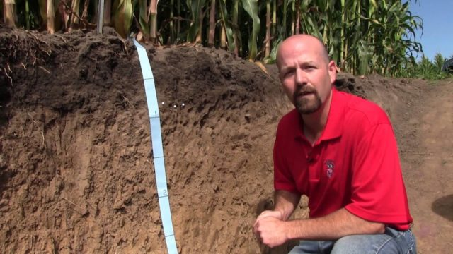 Long-Term Conventional and No-tillage Systems Compared