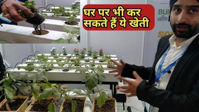 बिना मिट्टी के खेती । vertical hydroponic system । kisan farming