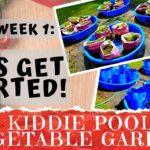 KIDDIE POOL VEGETABLE GARDEN – Week 1: Site Setup & Soil Preparation | Container Gardening | DIY