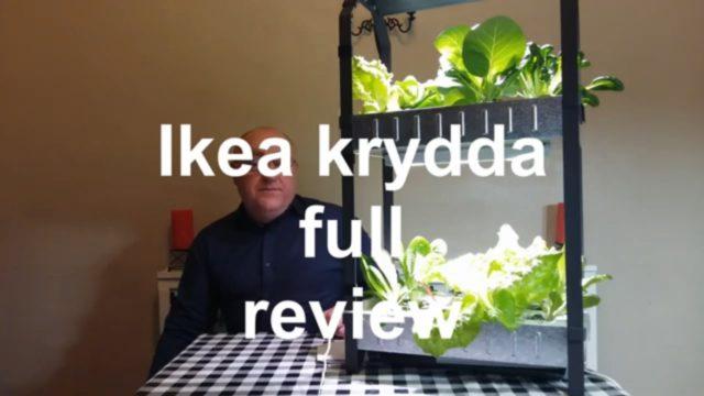 Ikea Krydda hydroponic system full review, growing 365 days a year