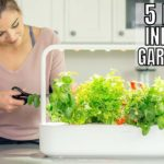 Best Indoor Hydroponic Gardening Systems for Your Home
