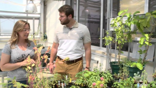 2 Minute Tour – McGowan South Greenhouse and Rooftop Garden