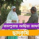 রামপুরায় আছিয়া জাফরির ছাদকৃষি | পর্ব ১৪৭ | Rooftop Farming | Shykh Seraj | Channel i |