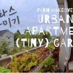 Setting up My Patio Garden |  Vertical Herb Garden and Window Box Gardening at Urban Apartment