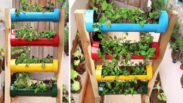 Amazing Vertical Vegetable Garden Made from Plastic Water Pipes