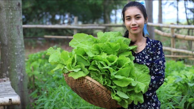 My healthy vegetable garden at home and make soup for dinner