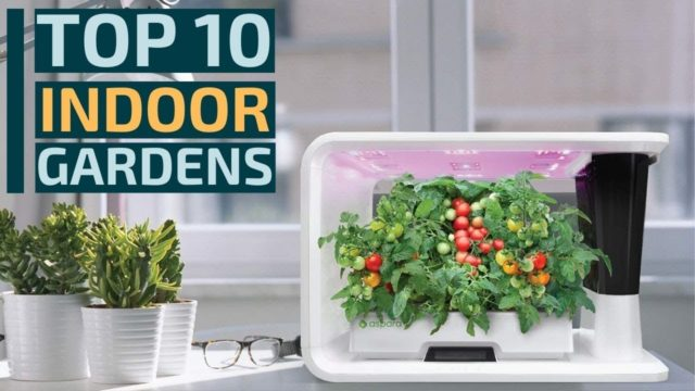 10 Best: Smart Led Indoor Gardens for 2020 / How to Make Your Own Indoor Herb Garden?