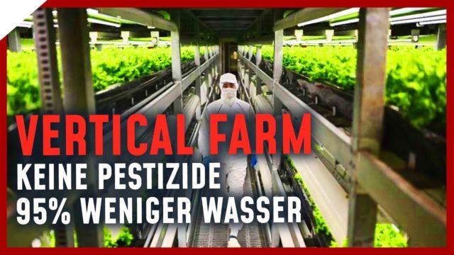 Effizienteste Vertical Farm Europas – die Zukunft der Landwirtschaft @Doktor Whatson  | Breaking Lab