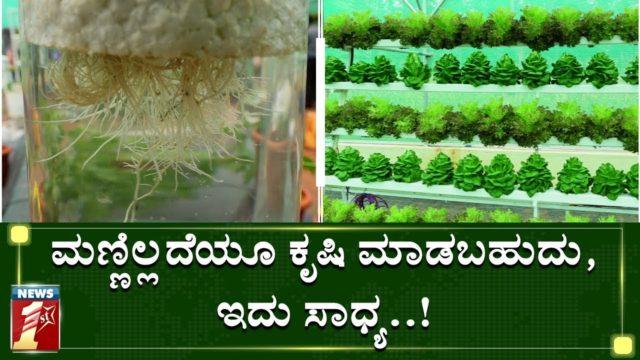ಹೈಡ್ರೋಪೋನಿಕ್ಸ್ ಕೃಷಿಗೆ ಮಣ್ಣಿನ ಅವಶ್ಯಕತೆಯೇ ಇಲ್ಲ..! | Hydrophonics | Krishimela | NewsFirst Kannada