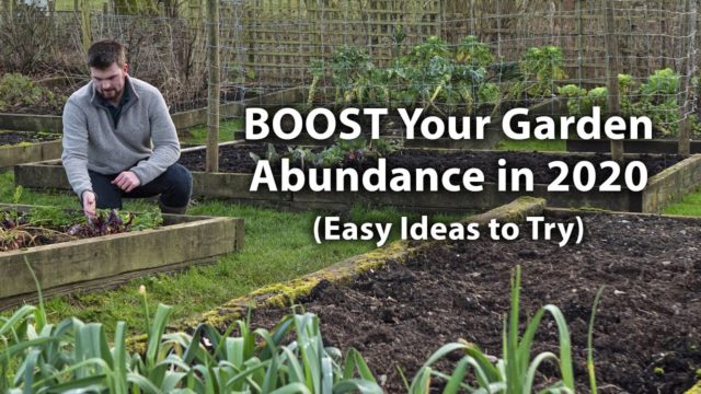10 Vegetable Garden Hacks to GROW Your Productivity in 2020! (Lesser-known Tips)
