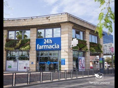 Jardín Vertical en Farmacia de Sevilla – Sanafarmacia