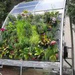 Easy hydroponic vertical garden design ideas