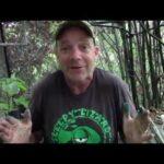 Avocado Farmer Explains How Covid 19 Pandemic Caused Simultaneous Food Shortage and Food Surplus