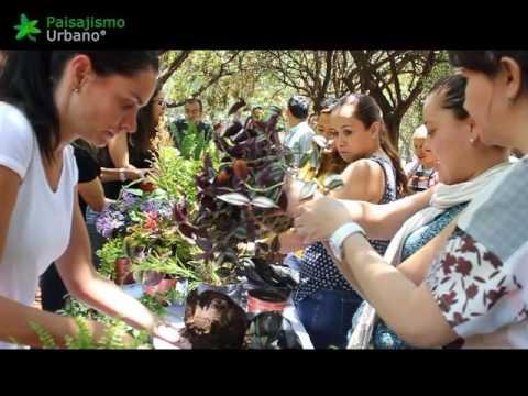 Curso de jardines verticales en México –  mayo 2016