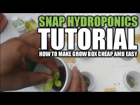 STEP BY STEP Paano at magkano gumawa ng HYDROPONICS grow box SNAP hydroponics  | Agri-nihan