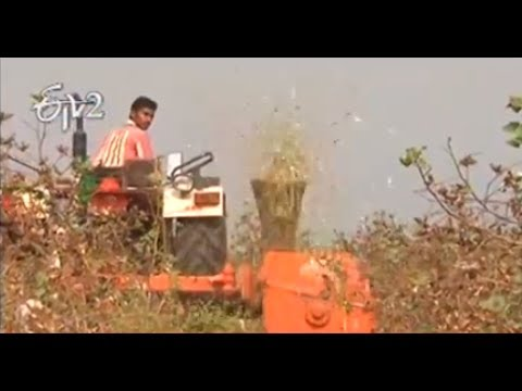 Guntur farmers is using Cotton stemps removal machine  – జైకిసాన్ – on 26th March 2014