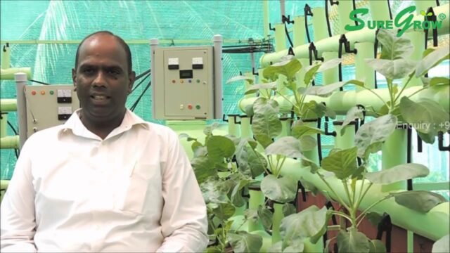 SoilLess AEROPONICS Home garden +91-9944018800