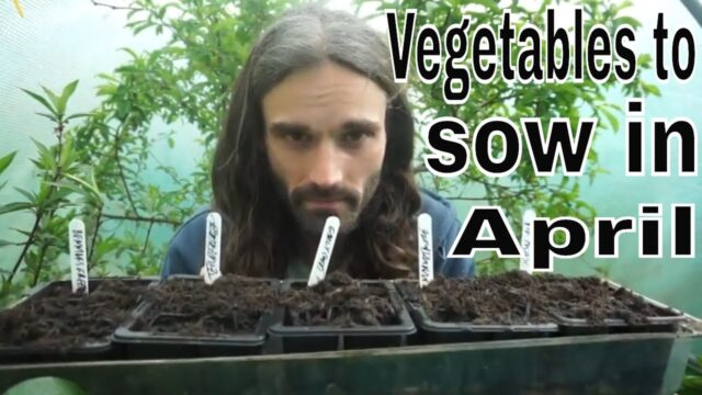 Must sow crops for April!