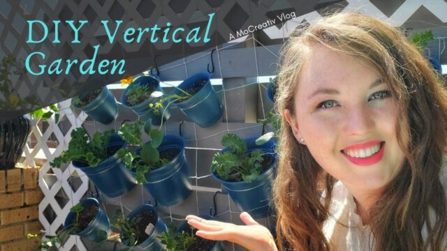 DIY Vertical Garden: An Easy and Budget-Freindly Plant Wall for Growing Vegetables