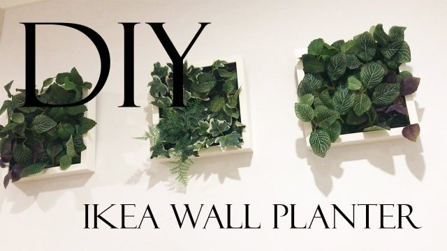 DIY IKEA WALL PLANTER #HOMESERIES | Jess & Aaron