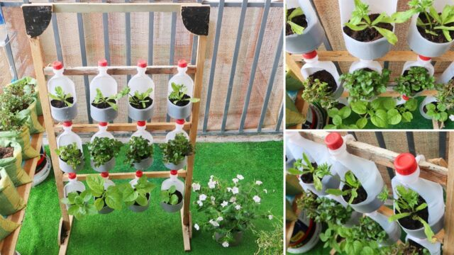 Amazing Vertical Garden, DIY Vertical Vegetable Garden from plastic bottles for Balcony