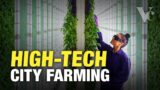 Why the Future of Farming is in Cities – The Big Money in Vertical Farming
