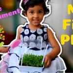 Gardening For Kids | How to Grow Plant | Plants for Kids | My First Plant