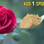MAGICAL ORGANIC FERTILIZER FOR FLOWERING & FRUITING   VEGETABLE GARDENING