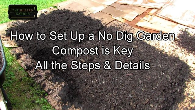 How to Set Up Your First 8 x 12 No Dig Vegetable Garden: All the Steps, Details  and Pro's & Con's