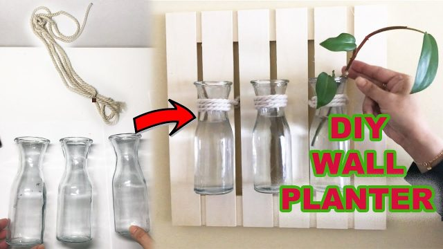 DIY Wall Planter Ideas l Best Indoor Wall Planter