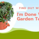 I Am Done With My Garden Tower 2, Find Out Why