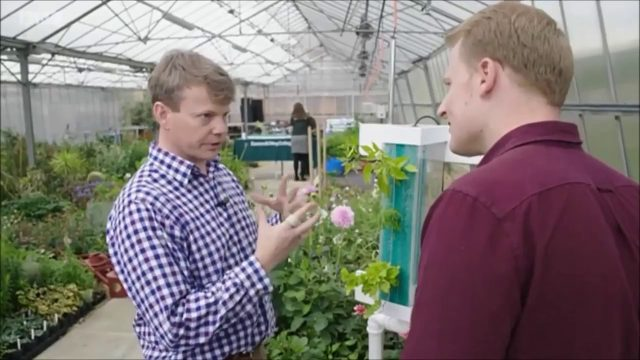 Aponic Vertical Aeroponic Food Growing Systems